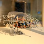 Starling 1.1 / African Robots by Ralph Borland, Maker Library Project @ Vitra Design Museum
