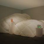 Anicka Yi: Skype Sweater, 2010–2017. Installation view @ Art Basel Unlimited 2017
