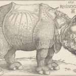Albrecht Dürer_Ausstellung Schrift und Bild