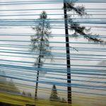 Bild zur Ausstellung nur ein Ozean aus Impulsen