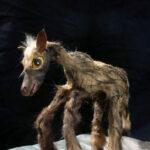 Bild zur Ausstellung Vulnerable Species